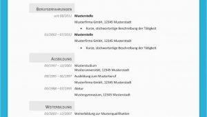 Lebenslauf Vorlage Englisch Xing Xing Lebenslauf Englisch Vorlage【2020】