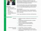 Lebenslauf Vorlage Grün Hybrid Lebenslauf Mit Zusammenfassung Und Fachkompetenzen