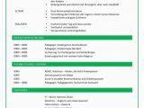 Lebenslauf Vorlage Grün Lebenslauf Mit Arbeitsprofil Grün Cv & Bewerbung
