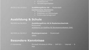 Lebenslauf Vorlage Schweiz Englisch 21 Lebenslauf Vorlage Schweiz Englisch In 2020
