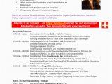 Lebenslauf Vorlage Schweiz Englisch Lebenslauf Vorlage Schweiz Tipss Und Vorlagen