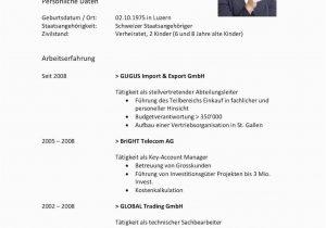 Lebenslauf Vorlage Schweiz Klassisch Lebenslauf Vorlagen ...