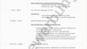 Lebenslauf Vorlage Unternehmensberatung Lebenslauf Unternehmensberatung Muster with Images