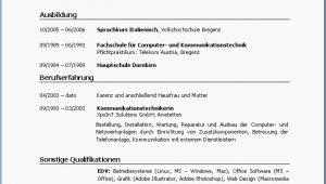 Lebenslauf Vorlagen Ams Ams Lebenslauf Vorlagen Bewerbungsportal Bewerbungstraining