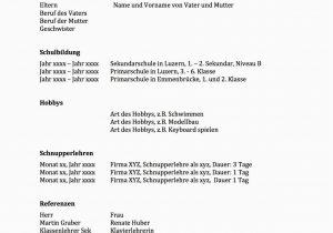 Lebenslauf Vorlagen Schweiz Kostenlos Lebenslauf Vorlage ...