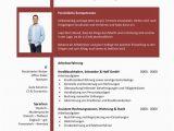 Lebenslauf Vorlagen Word Rot Lebenslauf Finanzmitarbeiter In Rot Cv & Bewerbung