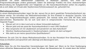 "Lmu Lebenslauf Englisch Ludwig Maximilians Universit""t München Internationale"