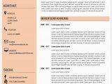 Moderner Lebenslauf Icons Moderner Lebenslauf Muster Und Vorlagen In Word