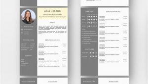 Moderner Lebenslauf Kaufen Moderne Lebenslauf Design Vorlagen Set Ideal Für Viel Berufserfahrung