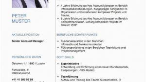Moderner Lebenslauf Schweiz Kurzprofil Lebenslauf Vorlage Word