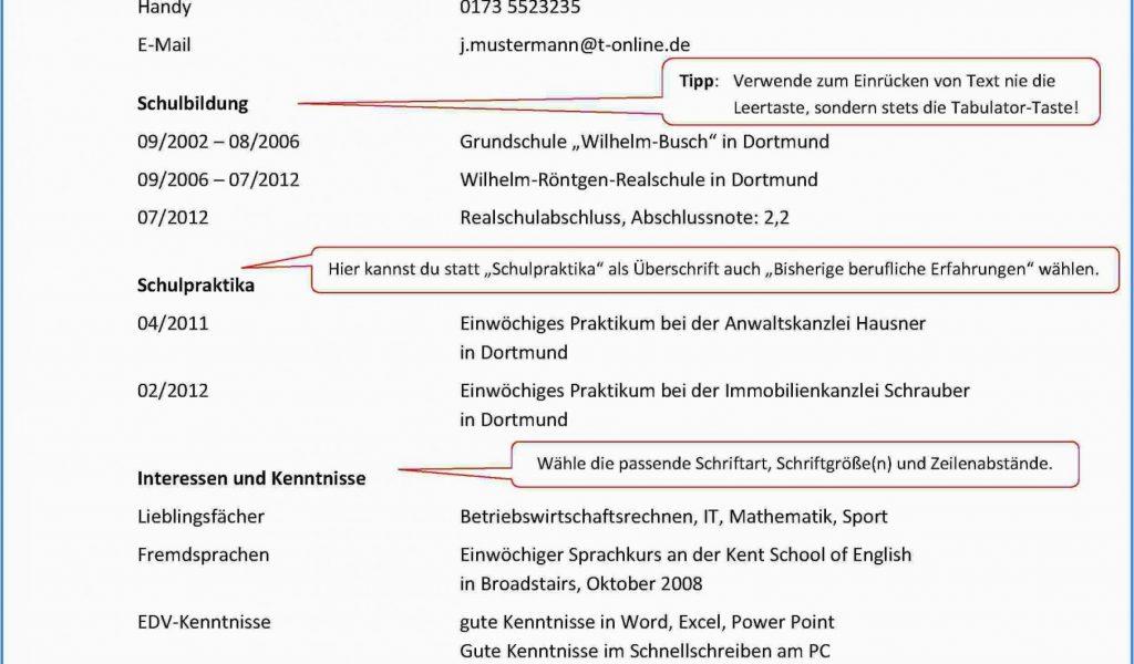 Muster Lebenslauf Englisch Tabellarisch 10 Hervorragend ...