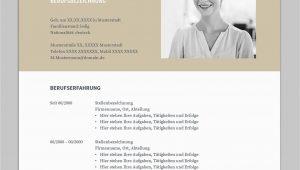 Openoffice Lebenslauf Design Bewerbung Napea Mit Lebenslauf Deutsch