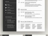 Programm Für Lebenslauf Design Clean Cv Resume