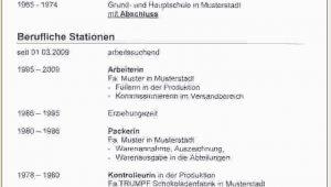 References Lebenslauf Deutsch Lebenslauf Muster Zahnarzt Lebenslauf Muster Zahnarzt
