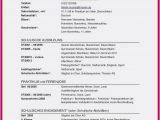 Sprachen Im Lebenslauf Englisch Deutsch Lebenslauf Beispiel Muster Doc Englisch Vorlage