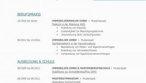 Word Lebenslauf Design Tabellarischer Lebenslauf Vorlage Kostenlose Muster Zum